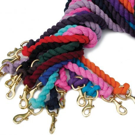 single coloured lead ropes