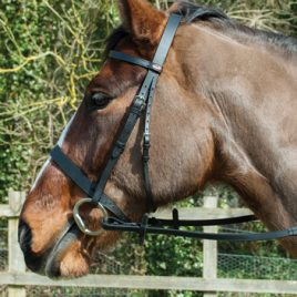 Windsor Leather Hunter Bridle