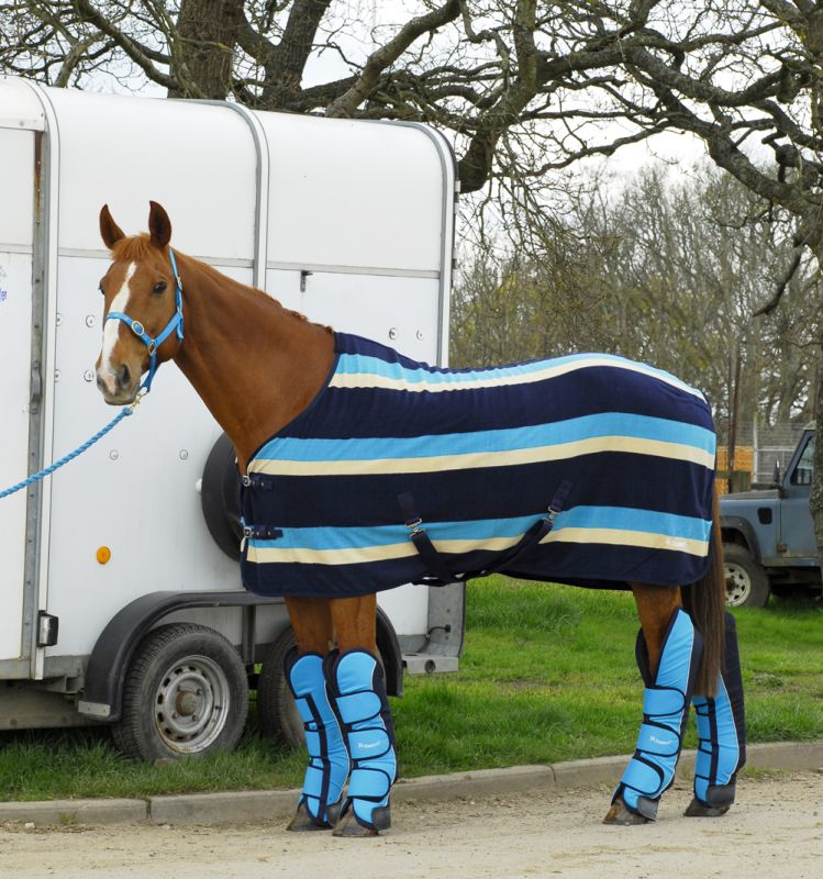 Turquoise Stripe Fleece Rug With And Navy Travel Boots