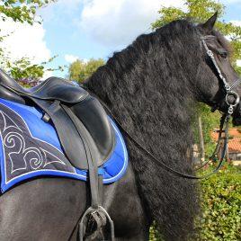 QHP Baroque Saddle Pad