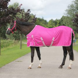 QHP Colour Fly Rug