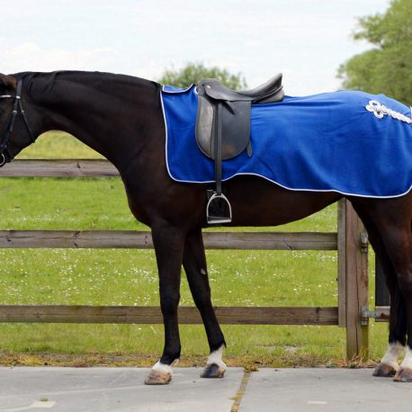 Royal Blue exercise fleece rug