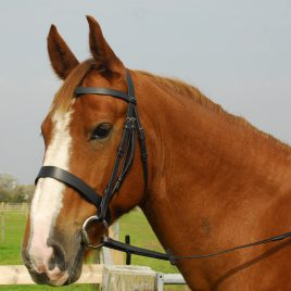 Heritage English Leather Hunter Bridle With Wide Cavesson Nose band
