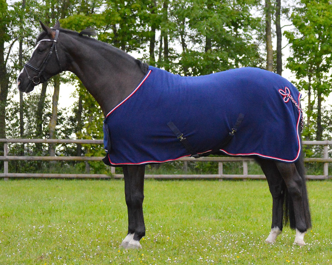Navy Fleece Rug