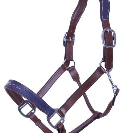 QHP Shiva Leather Head Collar