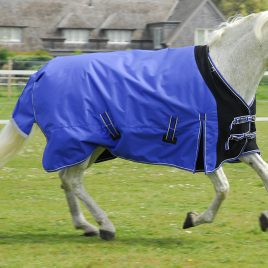 Rhinegold Elite Storm Rug With Waterproof Stretch Chest Panel and Detachable Neck