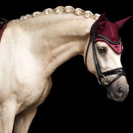 Equestrian Stockholm Bordeaux Ear Net