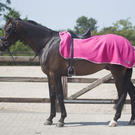 QHP Colour Exercise Fleece Rug
