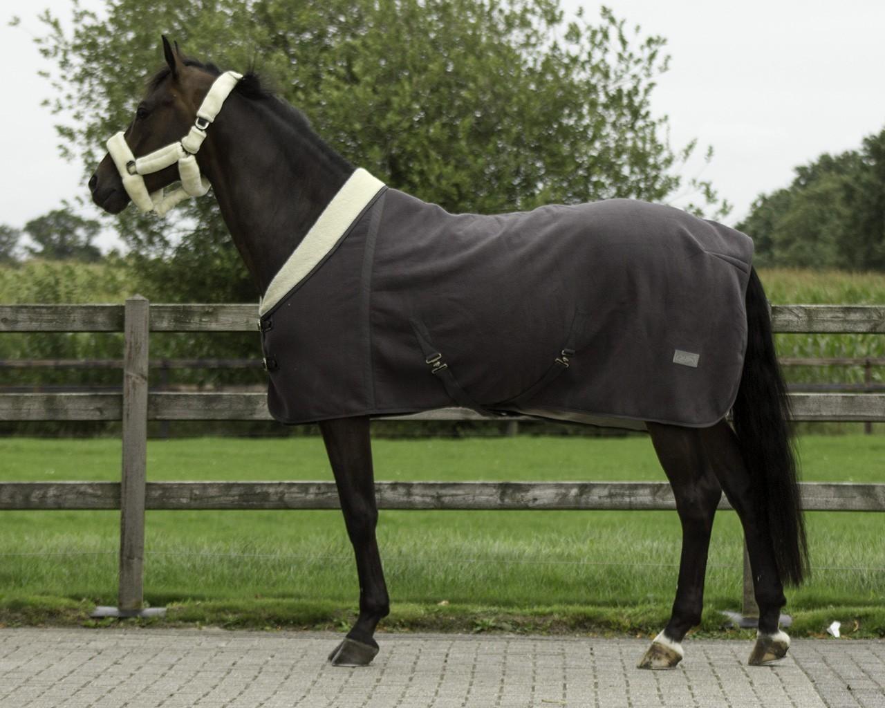 Rhinegold Elite Fleece Rug