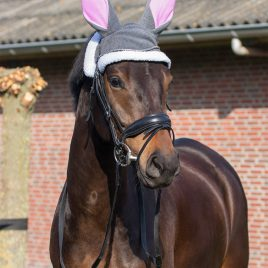 QHP Easter Bunny Ears