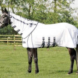 QHP Fly Rug with Detachable Neck