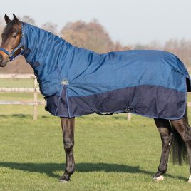 QHP Heavyweight Turnout Rug with Neck