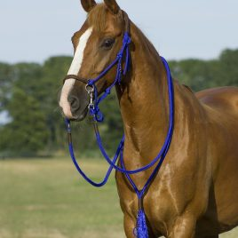 QHP Rope Liberty Head Collar with Reins