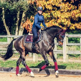 Equestrian Stockholm Merlot Crystal Jump/GP Saddle Pad