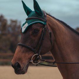 Equestrian Stockholm Amazonite Ear Net