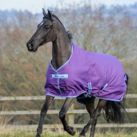 Bucas Freedom Lightweight Turnout Rug Purple