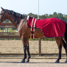 QHP Lunging Rug