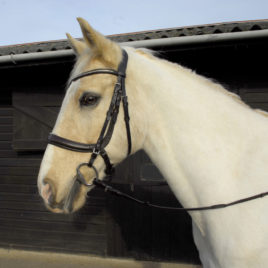 Heritage Anatomical Cavesson Bridle