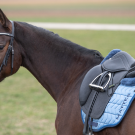 Mattes Spring Collection Saddle Pad