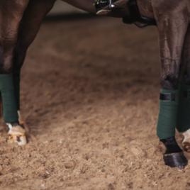 Equestrian Stockholm Deep Olivine Bandages