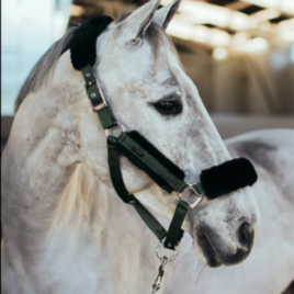 Equestrian Stockholm Deep Olivine Head Collar Set