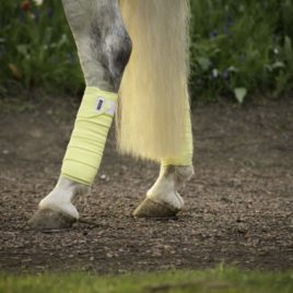 Equestrian Stockholm Soft Lemon Fleece Bandages