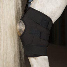 Incrediwear Equine Hock Boot