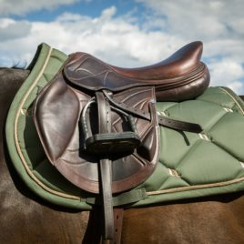 Back on Track Night Collection Olive Green Saddle Pad