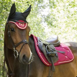 Back on Track Nights Collection Dark Red Bonnet