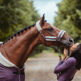 Equestrian Stockholm Orchid Bloom Head Collar Set