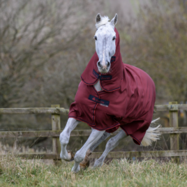 Bucas Freedom Cherry Heavyweight Turnout Rug with Neck
