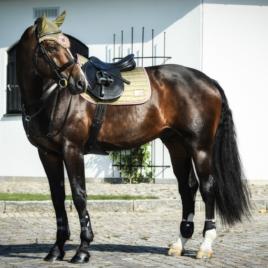 Equito Olive Blush Saddle Pad