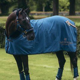 Equestrian Stockholm Monaco Blue Fleece Rug